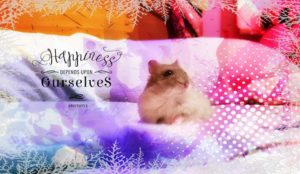 ANIMALES 7